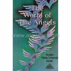 Picture of The World of The Angels